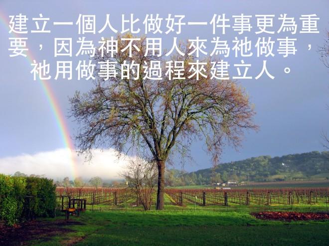 oak-vines-1534358